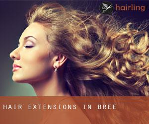 Hair extensions in bree limburg province flanders belgium by the use of hair extensions is not limited to the female gender only the male can also use them and females use hair extensions more because hair is pmusecretfo Gallery